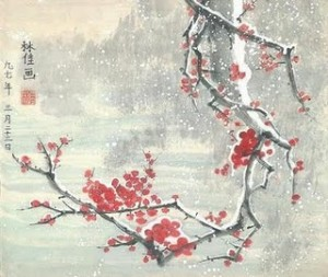 Frozen Cherry Blossoms in the Snow